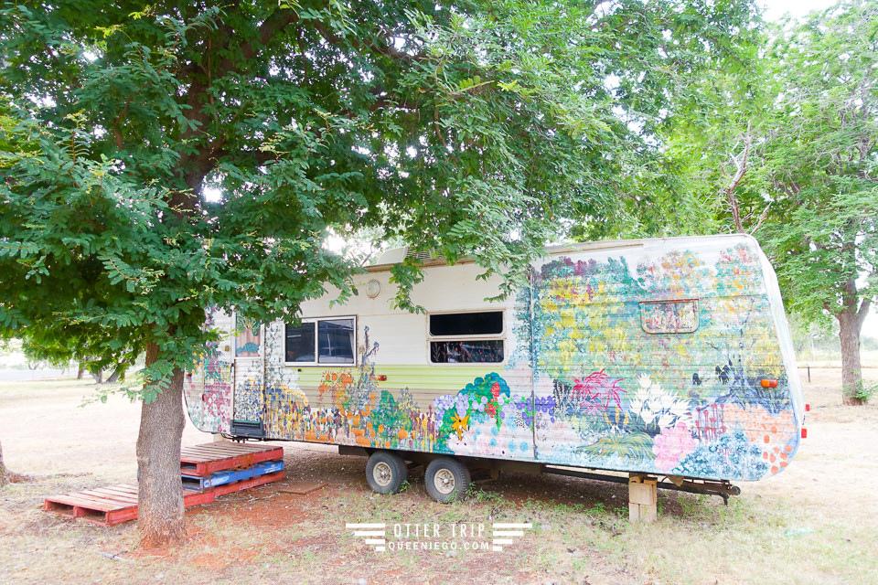 澳洲北領地露營車營地 Midland Caravan Park是青蛙跟孔雀的天地