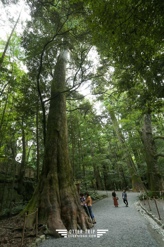 日本三重 日本必去景點-伊勢神宮,日本三大神宮,日本能量景點改運去~