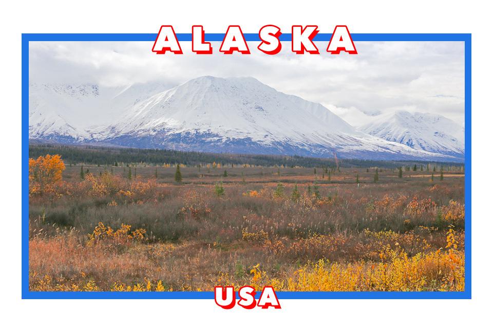 阿拉斯加旅遊 Fairbanks前往Talkeetna的路上風光