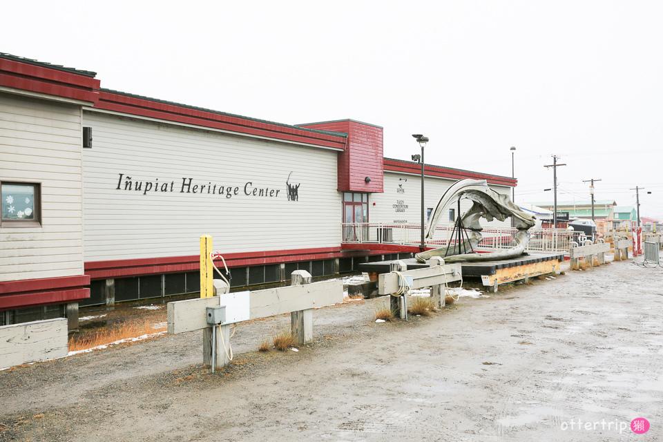 阿拉斯加Barrow 捕鯨季 愛斯基摩人的團圓節