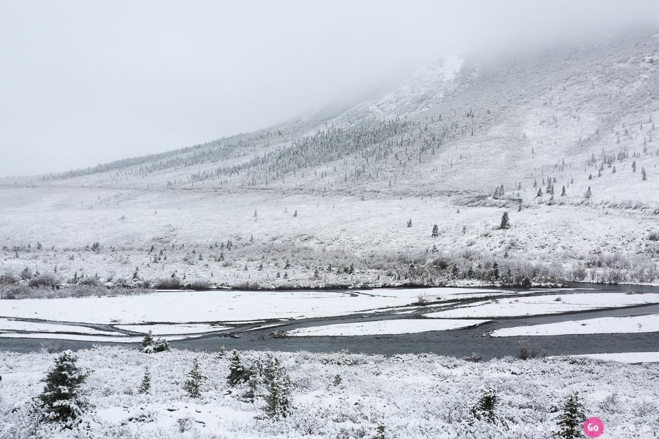 [阿拉斯加必游景點]迪納利國家公園Denali National Park的初雪