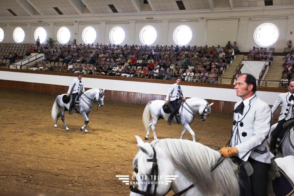 西班牙Jerez赫雷斯景點 安達魯西亞皇家馬術學校看馬術表演和馬車博物館接觸名駒