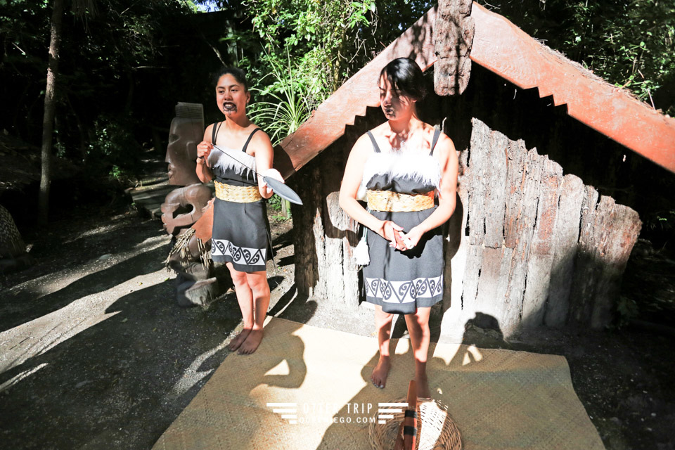 紐西蘭基督城景點 柳岸野生動物保護區的毛利村寨跳戰舞Haka/Willowbank Wildlife Reserve