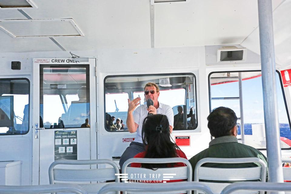 澳洲雪梨景點 captain cook cruises sydney出海賞鯨 Whale Watching Sydney 雪梨親子景點
