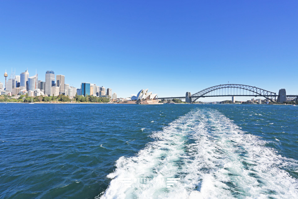 澳洲雪梨景點 captain cook cruises sydney出海賞鯨 Whale Watching Sydney 雪梨親子景點