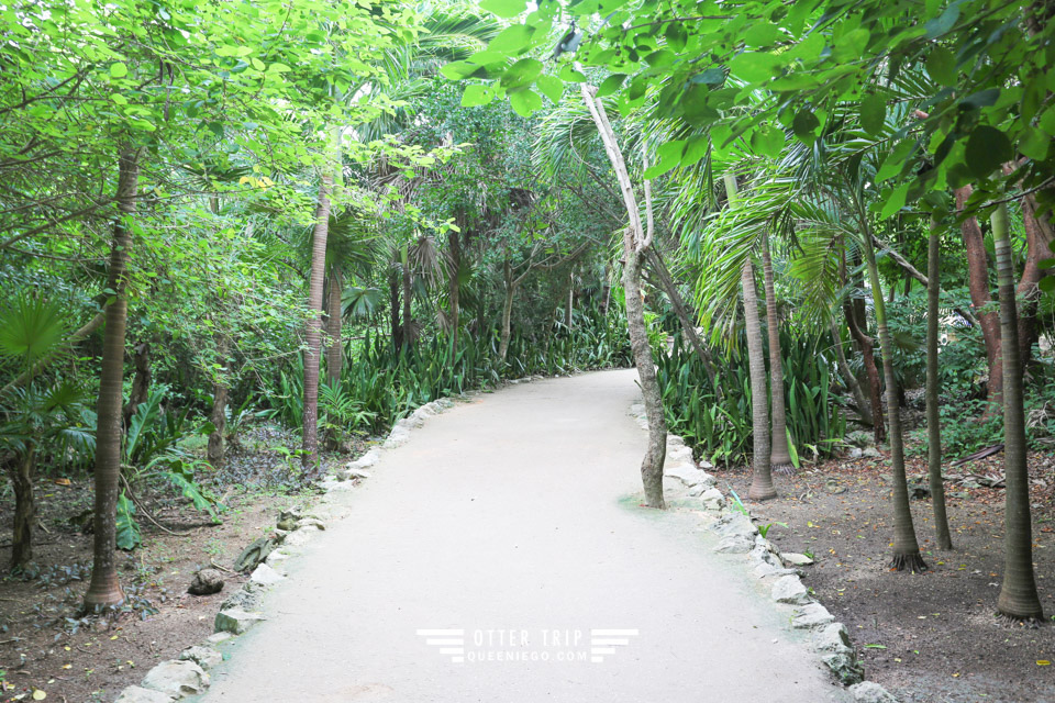 墨西哥圖盧姆 加勒比海的馬雅遺址Tulum Archaeological Site 猶加敦半島景點