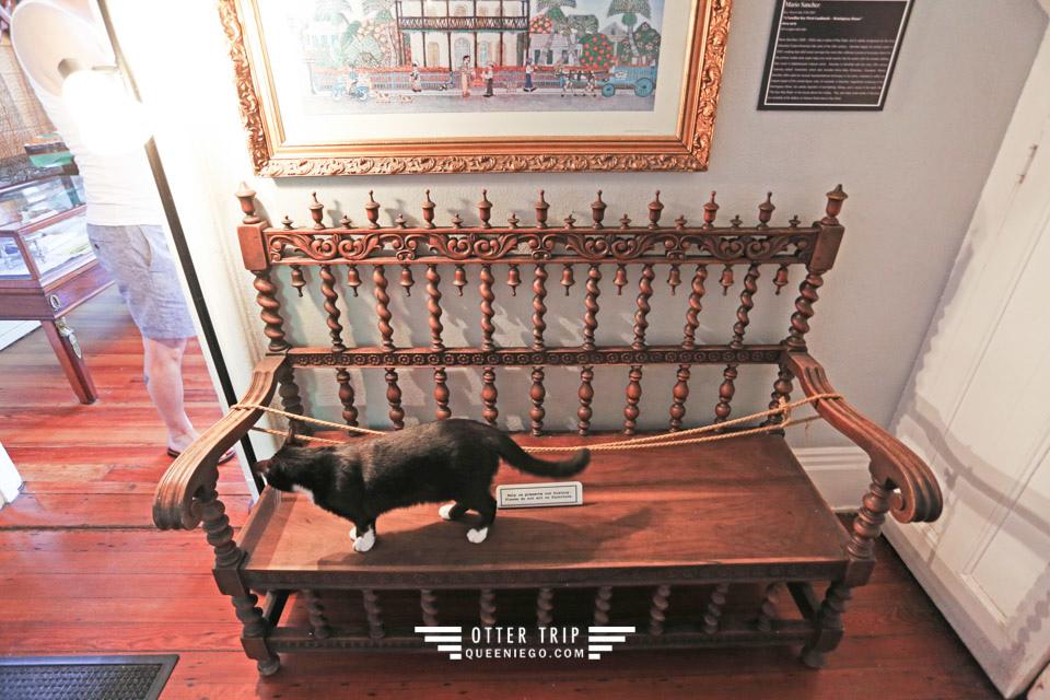 美國佛羅里達州 Key West景點 海明威故居博物館找六指貓 Hemingway's Home