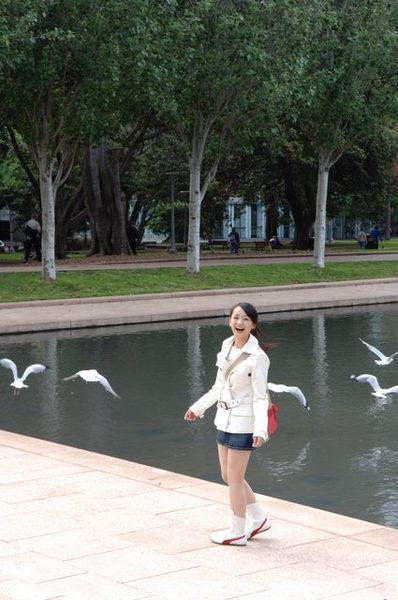 美麗的公園
