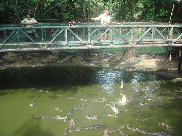 釣鱷魚遊戲-大家玩得不亦樂乎耶