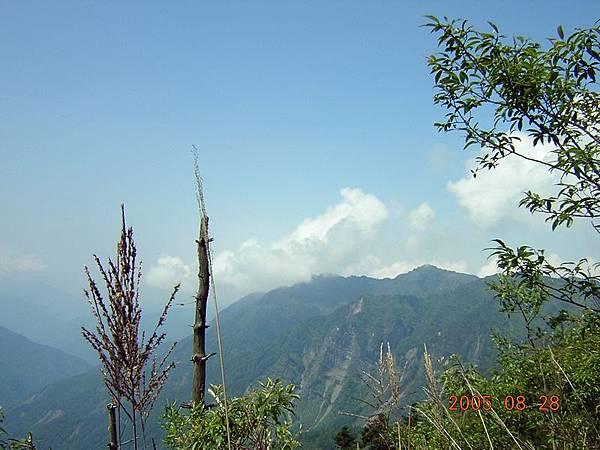 上山前的風景