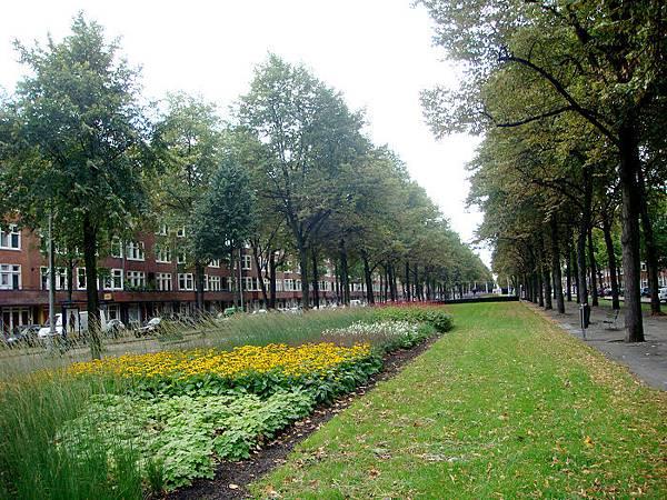 路寬太並不增加車道反而做綠化果然是荷蘭會做的事.jpg