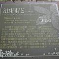P1030322.JPG