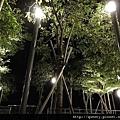 空中花園真的有樹!!