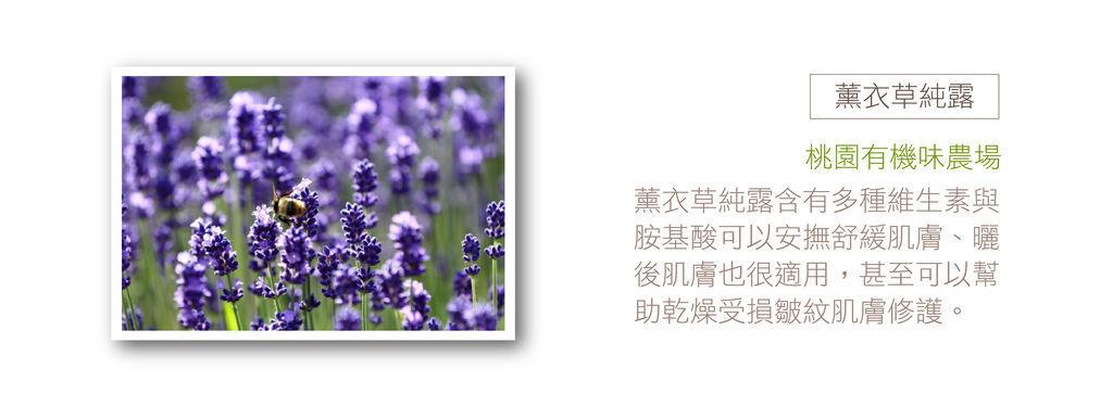 女款 -產品內頁1920x1920 A-09.jpg