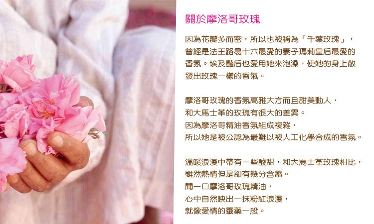 rose-4a.jpg
