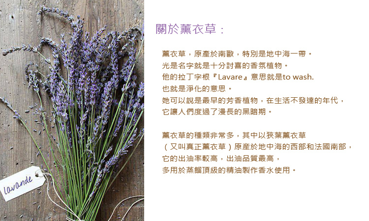 Lavender-3A.jpg