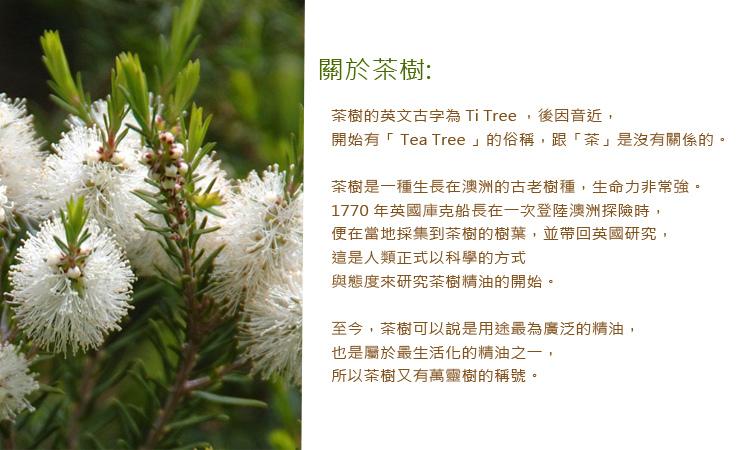 tea-tree3.jpg