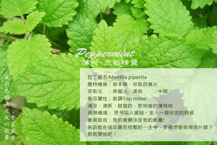 Mentha-2A.jpg