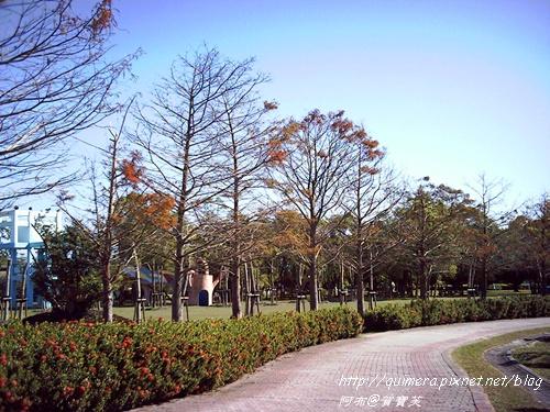 知卡宣森林公園