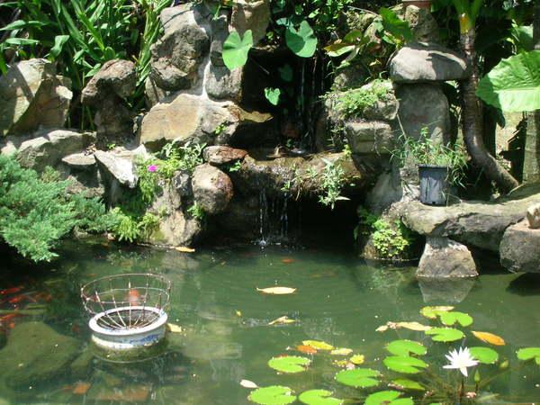 華山小木屋水塘2