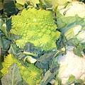 Avignon-市場賣的怪青菜.JPG