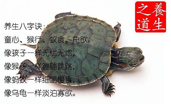 閉曾淏 (58)