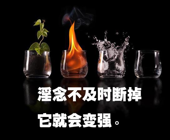 赽粟滄 (97)