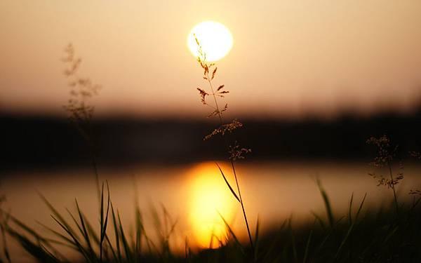 Vintage-Sunset