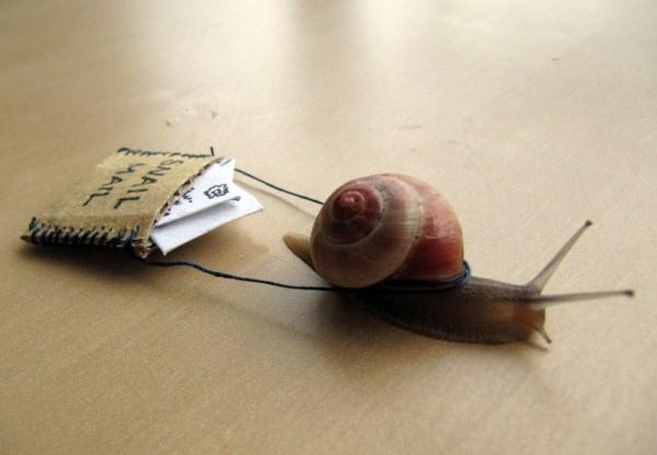 snail_mail-600x450