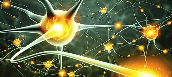 Nerve-Conduction-Study