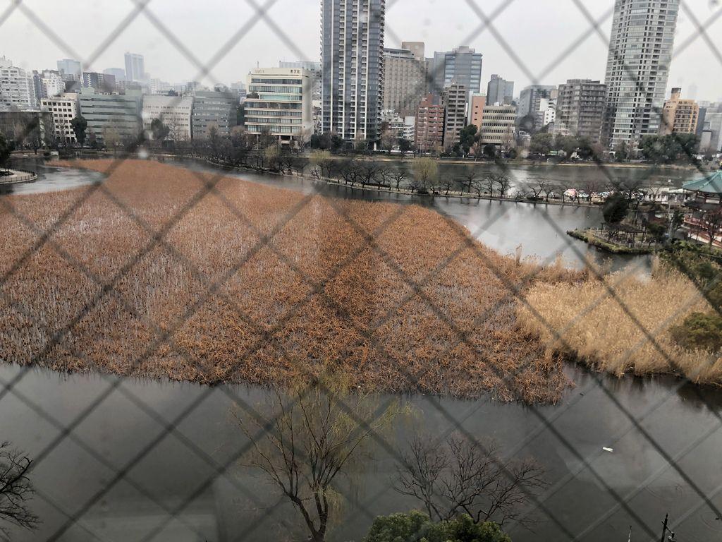 京成上野APA15.JPG