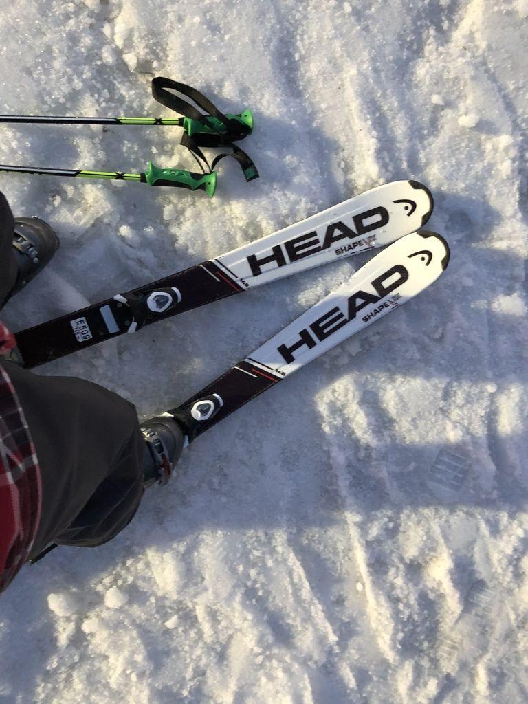 滑雪信州牛04.JPG