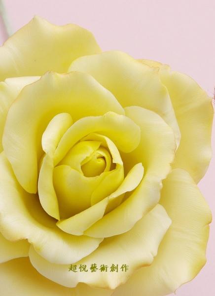 玫瑰花圖-1