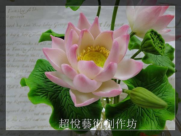 DSC02863_副本