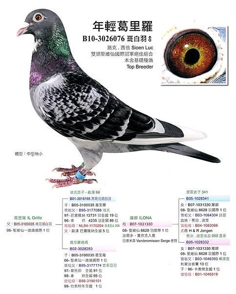 SKMBT_C35314041221450