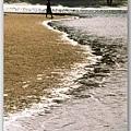 看图说画(8) : 海边的银项链