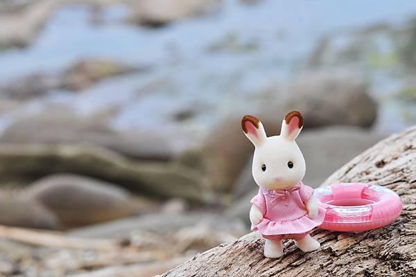 夏季海邊-小兔2
