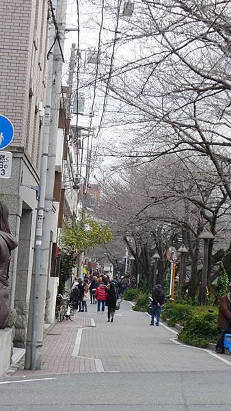 中目黑街景7.jpg