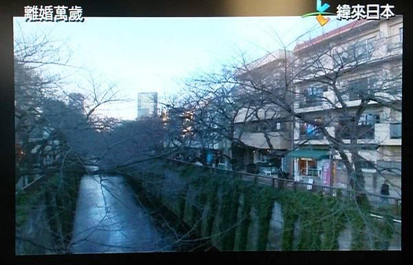 日劇離婚萬歲場景TV擷取1.jpg