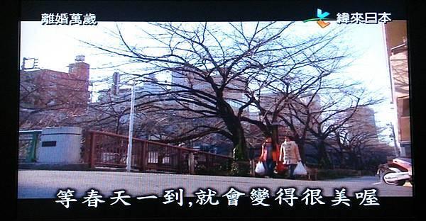 日劇離婚萬歲場景TV擷取6.jpg