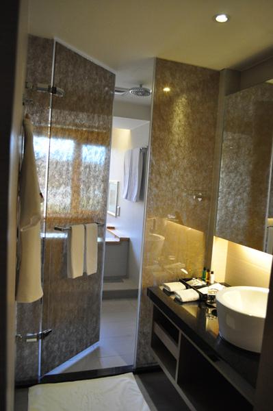 日月潭大飯店-浴室1.jpg