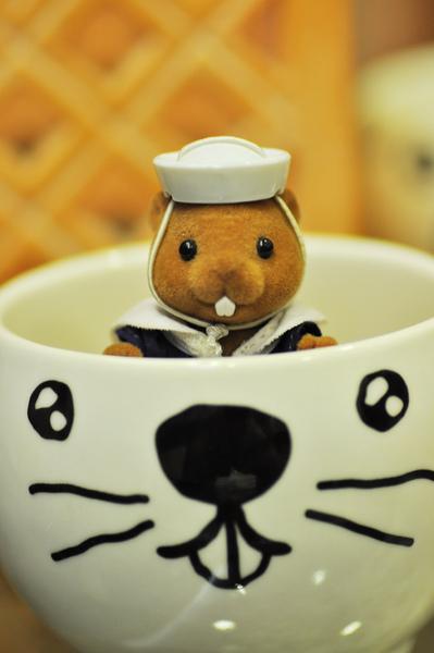 土撥鼠杯.jpg