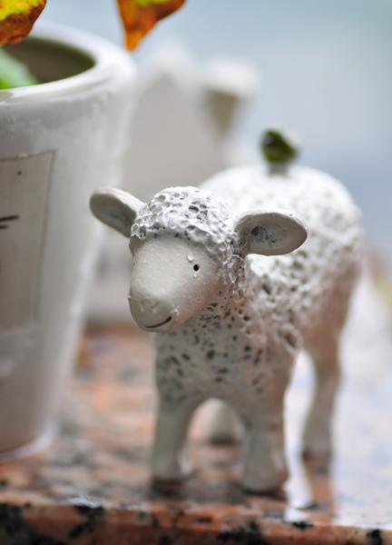 園藝-綿羊1.jpg
