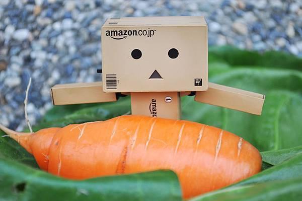 小楞-拔蘿蔔2.jpg
