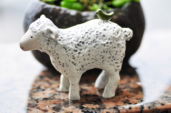 園藝-綿羊2.jpg