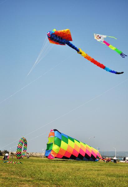 2010新竹國際風箏節1.jpg