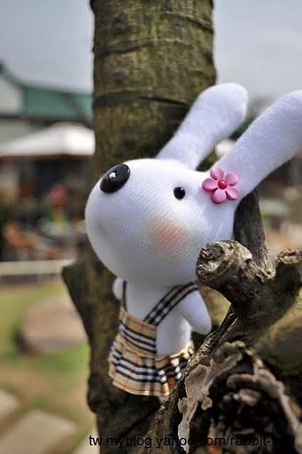 rabbit_mammy.jpg
