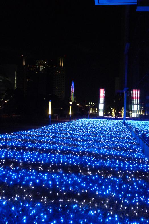 20110130日本夜景2.jpg