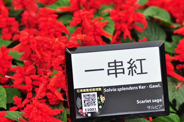 花博-新生公園區9.jpg