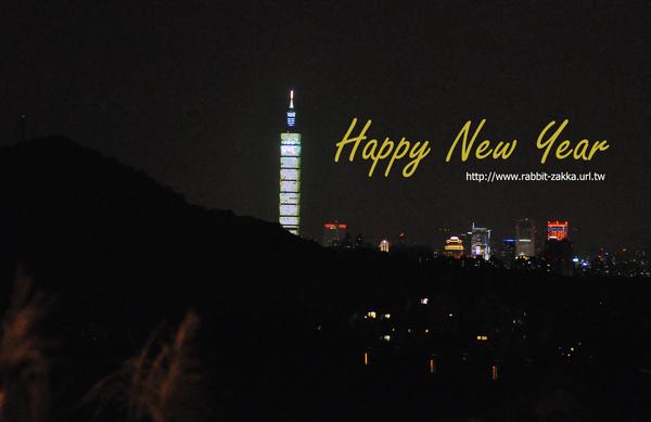 2011-01-new year.jpg